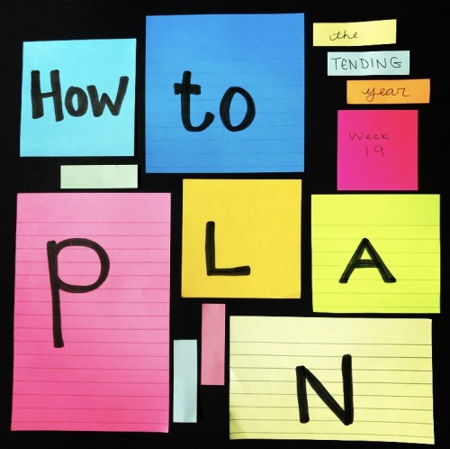 1.19: How to Plan