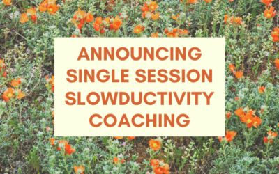 Announcing Single Session Slowductivity Coaching